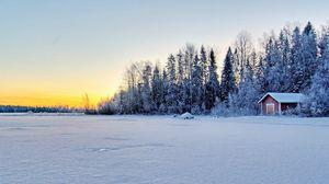 Превью обои снег, поле, деревья, здания