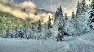 Превью обои снег, туман, облака, холмы, зима, лес, ель