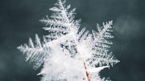 Превью обои снежинка, снег, лед, макро, узор