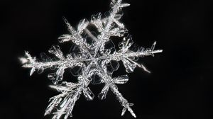 Превью обои снежинки, макро, лед, узор, кристалл