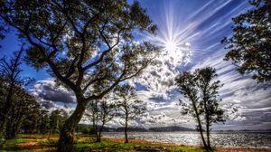 Превью обои солнце, свет, облака, цвета, деревья, берег, трава, зеленая, весна