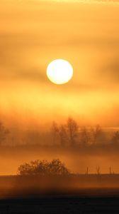 Превью обои солнце, закат, туман, деревья, природа, пейзаж