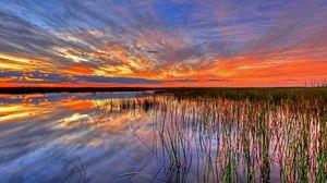 Превью обои сша, эверглейдс, болото, флорида
