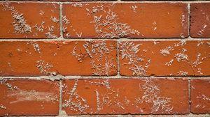 Превью обои стена, кирпич, поверхность, текстура, коричневый