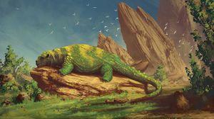 Превью обои существо, зверь, зеленый, камень, лежит, спит