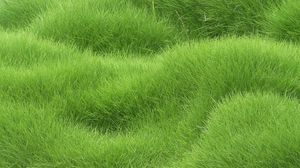 Превью обои текстура, трава, поле