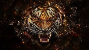 Превью обои тигр, стекло, осколки, агрессия, оскал