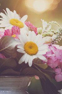 Превью обои цветы, букет, лепестки, ваза, эстетика
