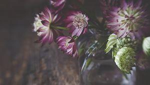Превью обои цветы, лепестки, букет, ваза, эстетика