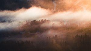 Превью обои туман, деревья, деревня, вид сверху