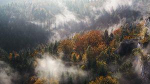 Превью обои туман, деревья, горы, вершина