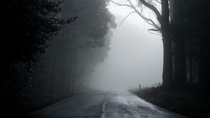 Превью обои туман, дорога, деревья, асфальт, пустота