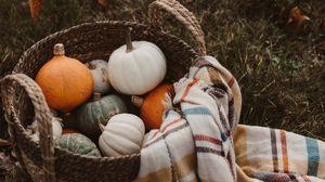 Превью обои тыква, корзина, плед, осень, урожай