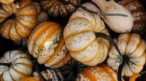 Превью обои тыква, овощ, осень, хэллоуин