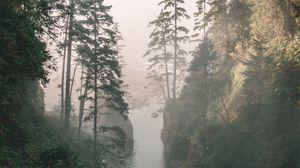 Превью обои ущелье, река, туман, скалы, деревья