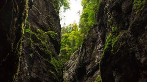 Превью обои ущелье, скалы, деревья, горы, природа