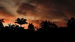 Превью обои вечер, деревья, очертания, темный, закат, облака