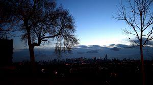 Превью обои вечер, дерево, лето, свет