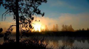 Превью обои вечер, закат, дерево, красиво