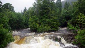 Превью обои великобритания, конуи, река, поток, грязная, вода, деревья, пасмурно