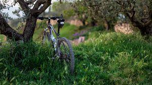 Превью обои велосипед, трава, деревья