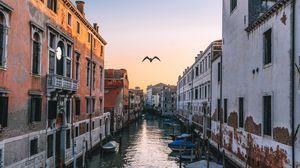 Превью обои венеция, италия, канал, чайка, река