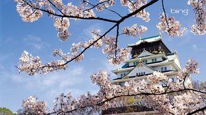 Превью обои весна, сакура, цветение, дворец, япония, архитектура