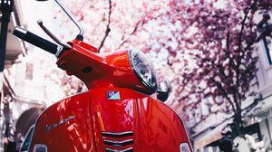 Превью обои vespa, мотороллер, скутер, красный, сакура