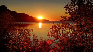 Превью обои ветки, листья, осень, закат, гора