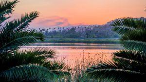 Превью обои ветки, озеро, закат, трава, санта-барбара, сша