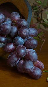 Превью обои виноград, ягоды, фрукт, гроздь