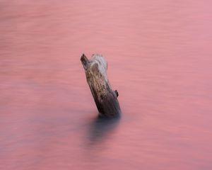 Превью обои вода, бревно, розовый, минимализм, природа