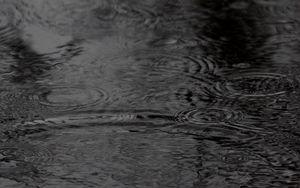Превью обои вода, круги, волны, дождь, черно-белый