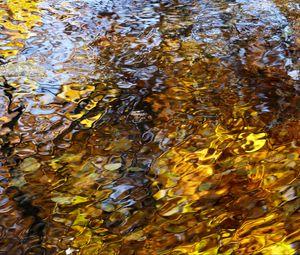 Превью обои вода, волны, рябь, отражение, осень, макро