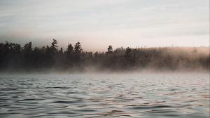 Превью обои вода, волны, туман, деревья, сумерки