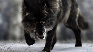 Превью обои волк, хищник, черный, дикая природа, собака
