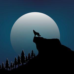 Превью обои волк, скала, луна, вектор, арт, темный