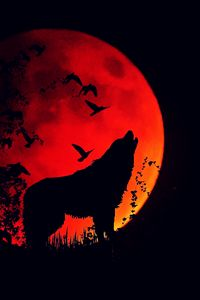 Превью обои волк, вой, силуэт, полнолуние, огненная луна