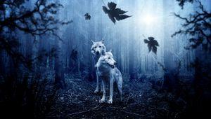Превью обои волки, хищники, лес, фотошоп