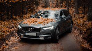 Превью обои volvo, автомобиль, серый, лес, осень