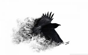 Превью обои ворона, крылья, птица, взмах