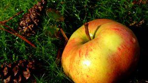 Превью обои яблоко, трава, фрукт, спелый