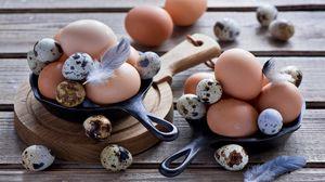 Превью обои яйца, куриные яйца, перепелиные яйца, перья