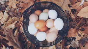 Превью обои яйца, осень, корзинка, листва