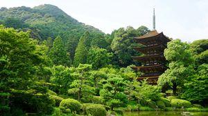 Превью обои япония, ямагучи, пруд, деревья