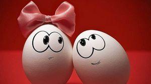 Превью обои яйца, пара, бант, эмоции