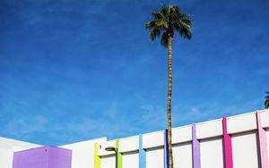 Превью обои здание, разноцветный, пальма, минимализм