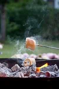 Превью обои зефир, десерт, угли, огонь
