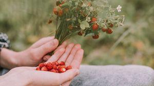 Превью обои земляника, ягоды, спелый, букет, руки