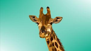 Превью обои жираф, вектор, морда, арт